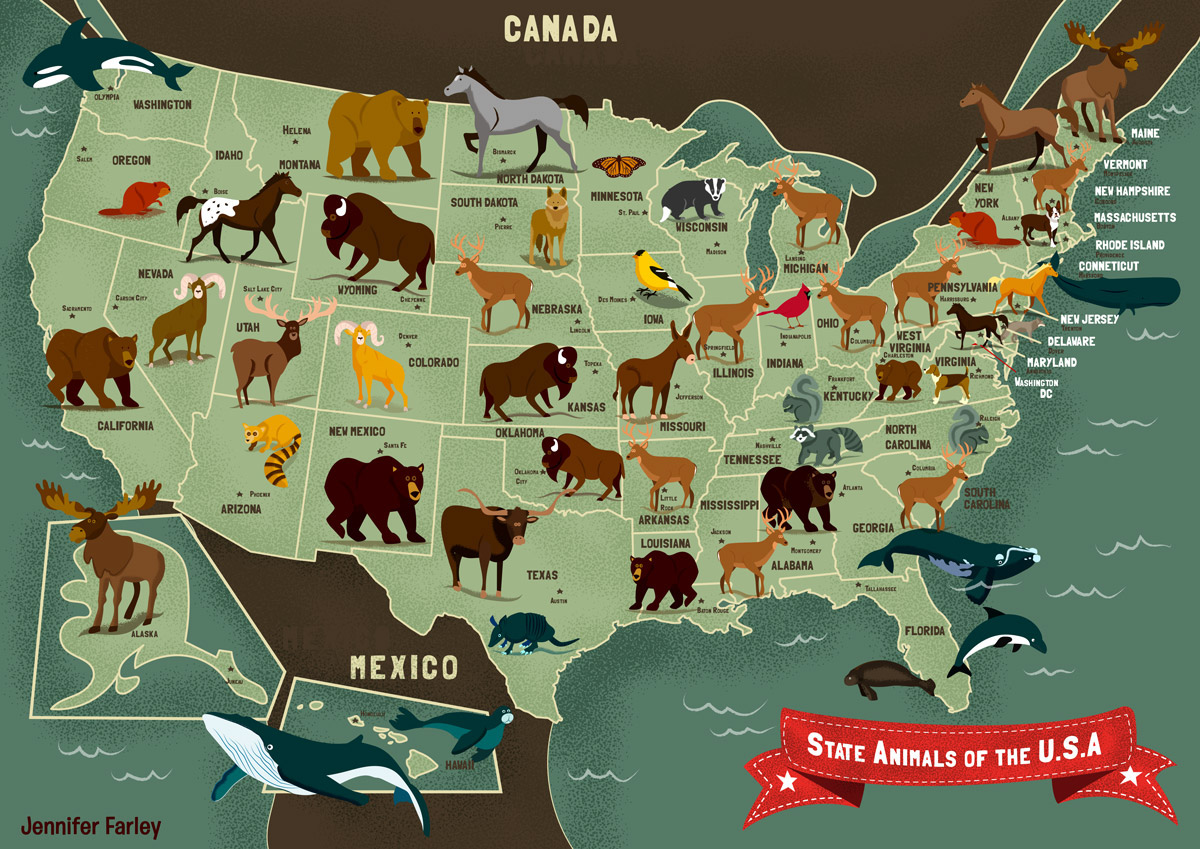 State animals of the usa on behance available to buy on etsy in a range of sizes 8 x 10 in 12 x 16 in 16 x 20 in 18 x 24 in 24 x 36in buy here httpbitusa animal map gumiabroncs Image collections