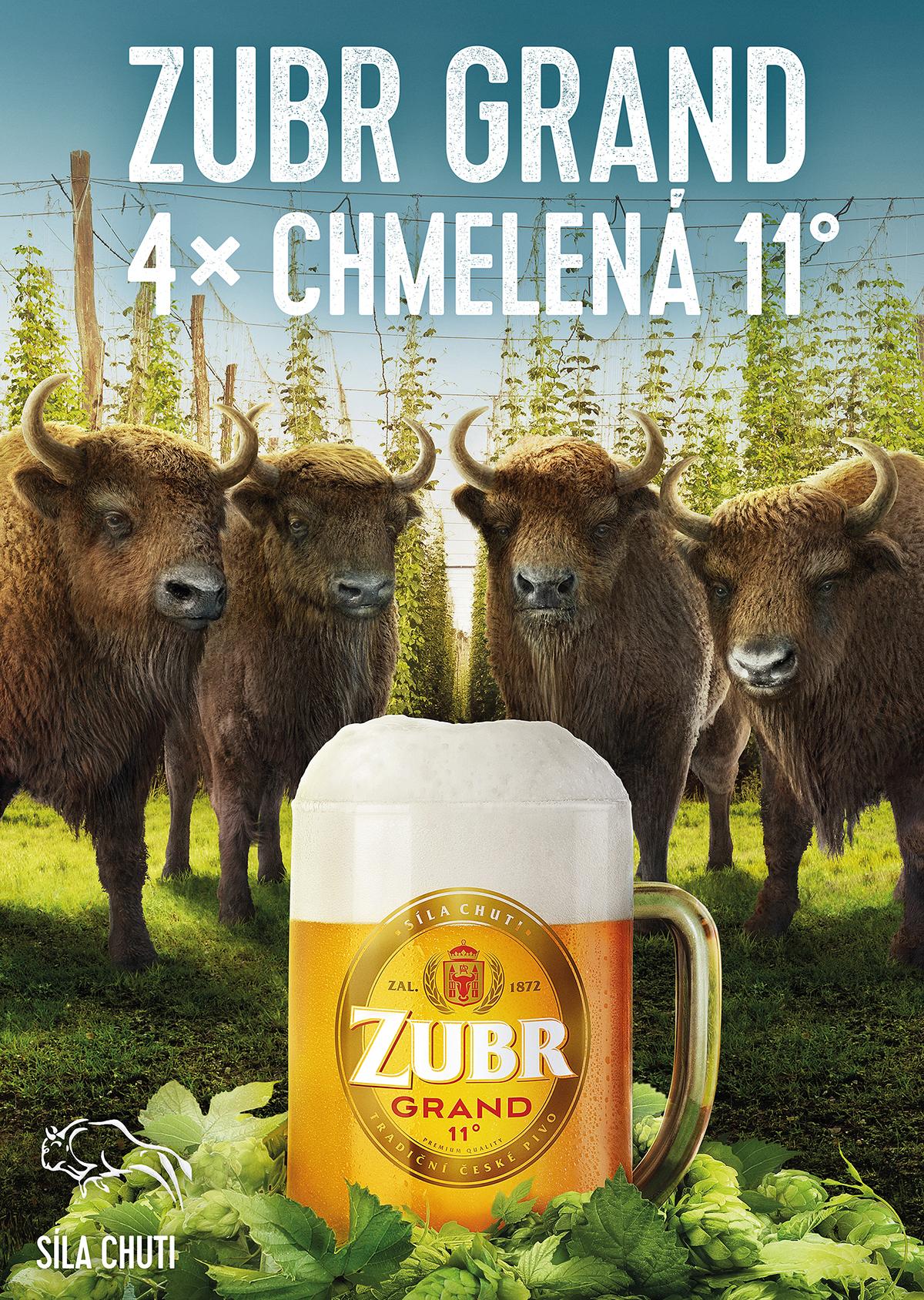beer zubr animal CGI Nature Sun green Fur 3D retouch mattepaint cheers