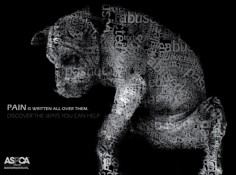 Animal abuse posters - photo#20