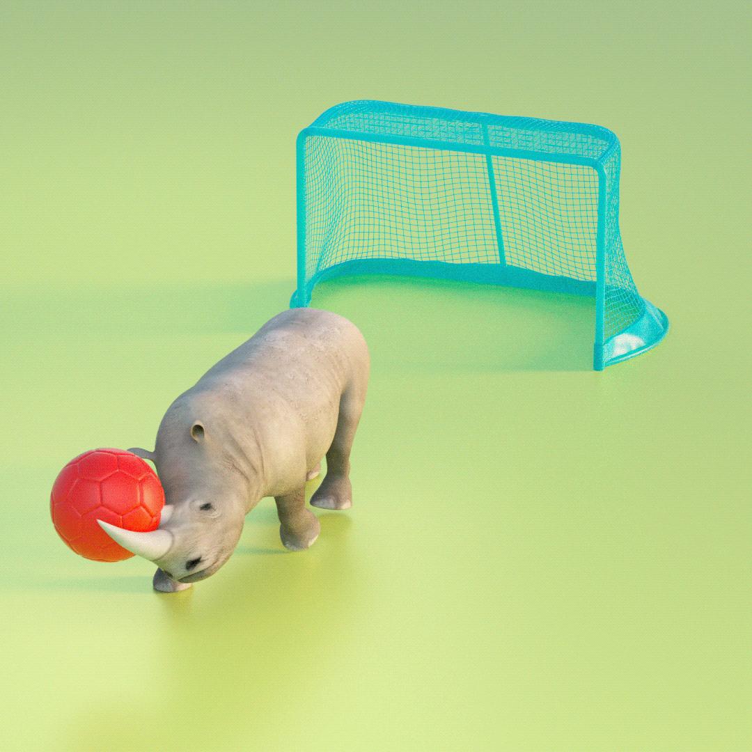 rhino hate football by keshaw singh
