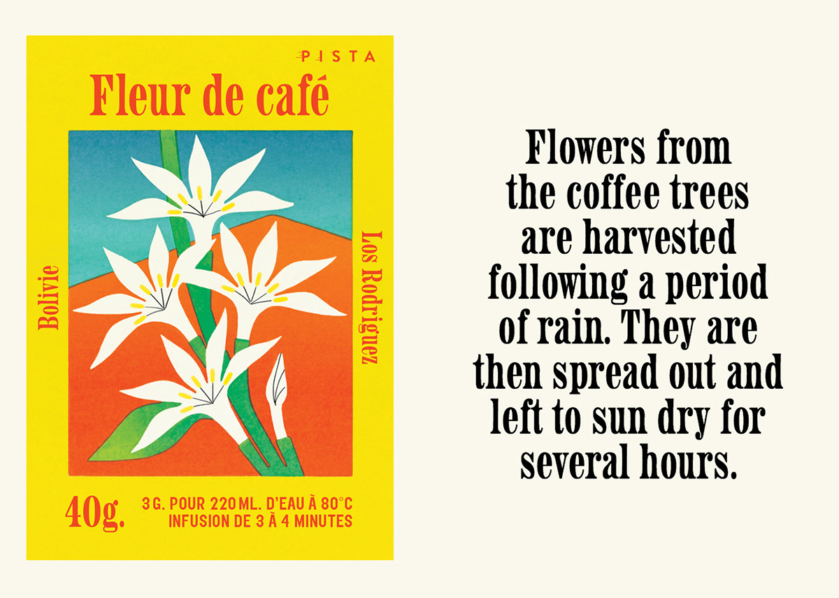 beans bolivia Coffee ecological flower mountains Nature Packaging Sustainable tea