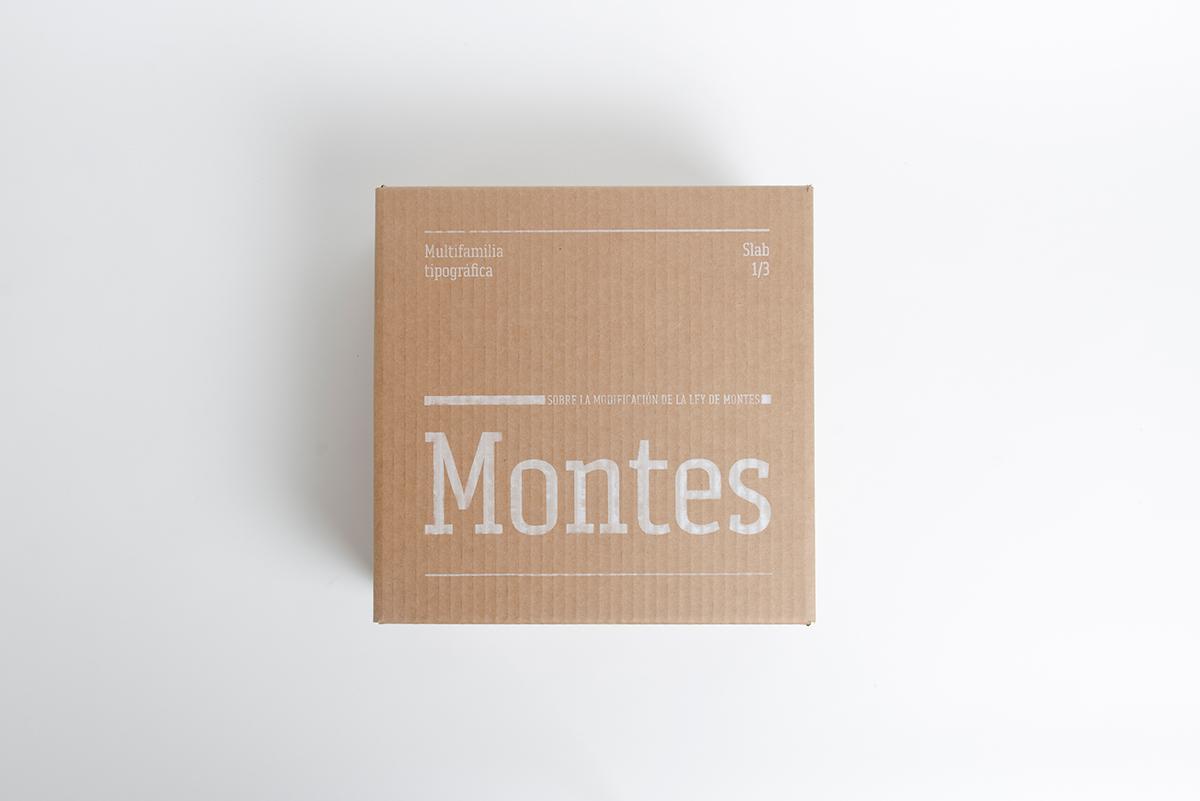 typography   tipografia letters wood slab serif specimen Packaging