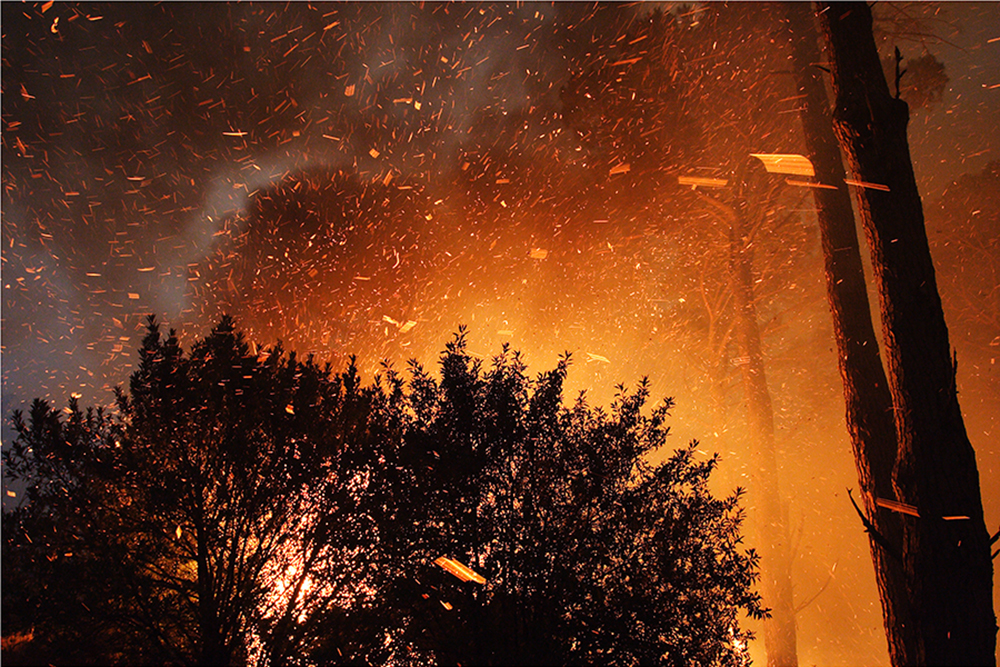 fire arson table mountain cape town mountain Fire Department fynbos forest smoke