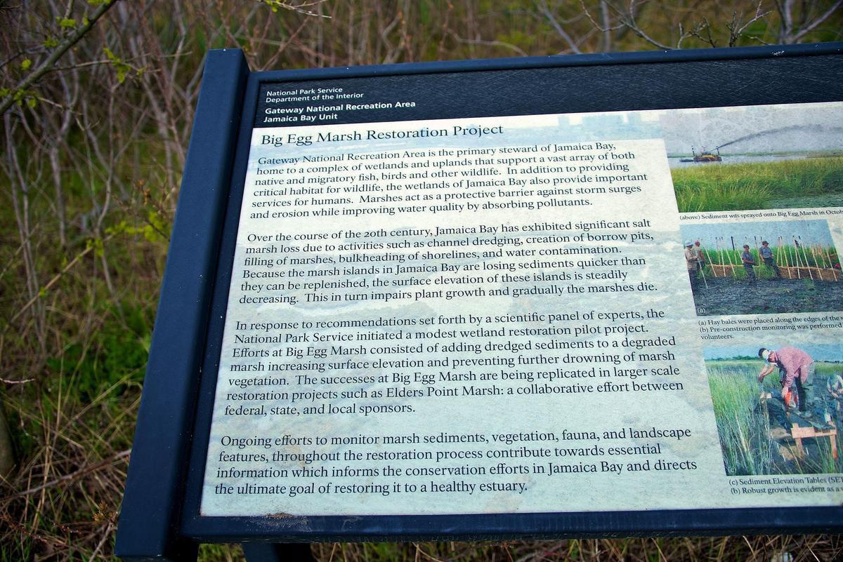 The Big Egg Marsh Restoration Project Meets Mankind on Behance