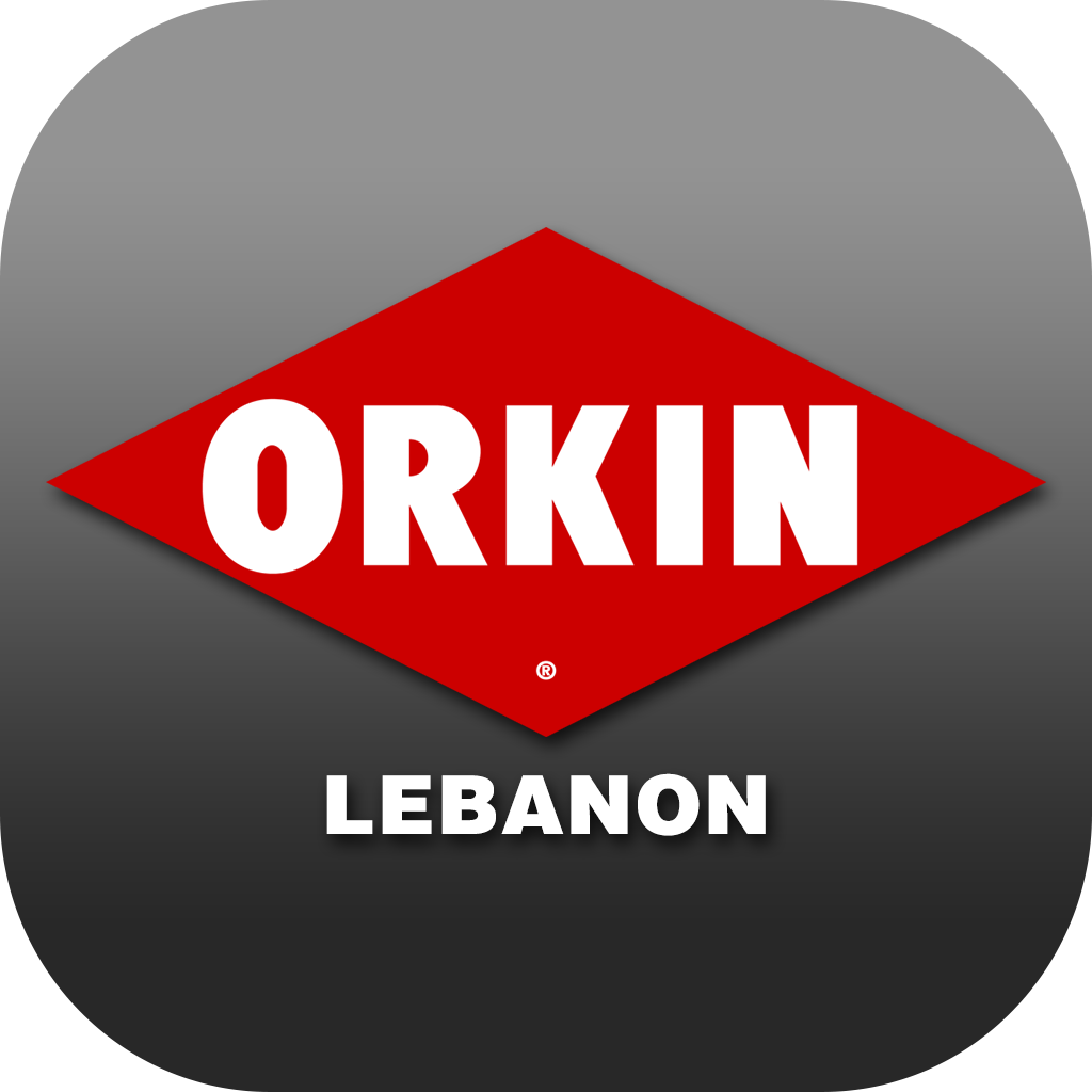 ORKIN LEBANON on Behance