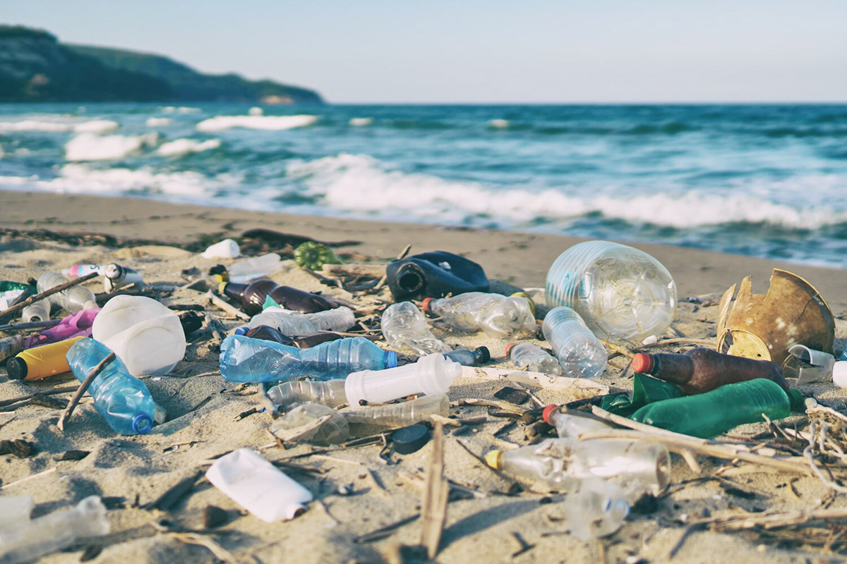 circular economy eco friendly ocean plastic recycle recycling Sustainable toothbrush Transmaterial upcycle zero waste