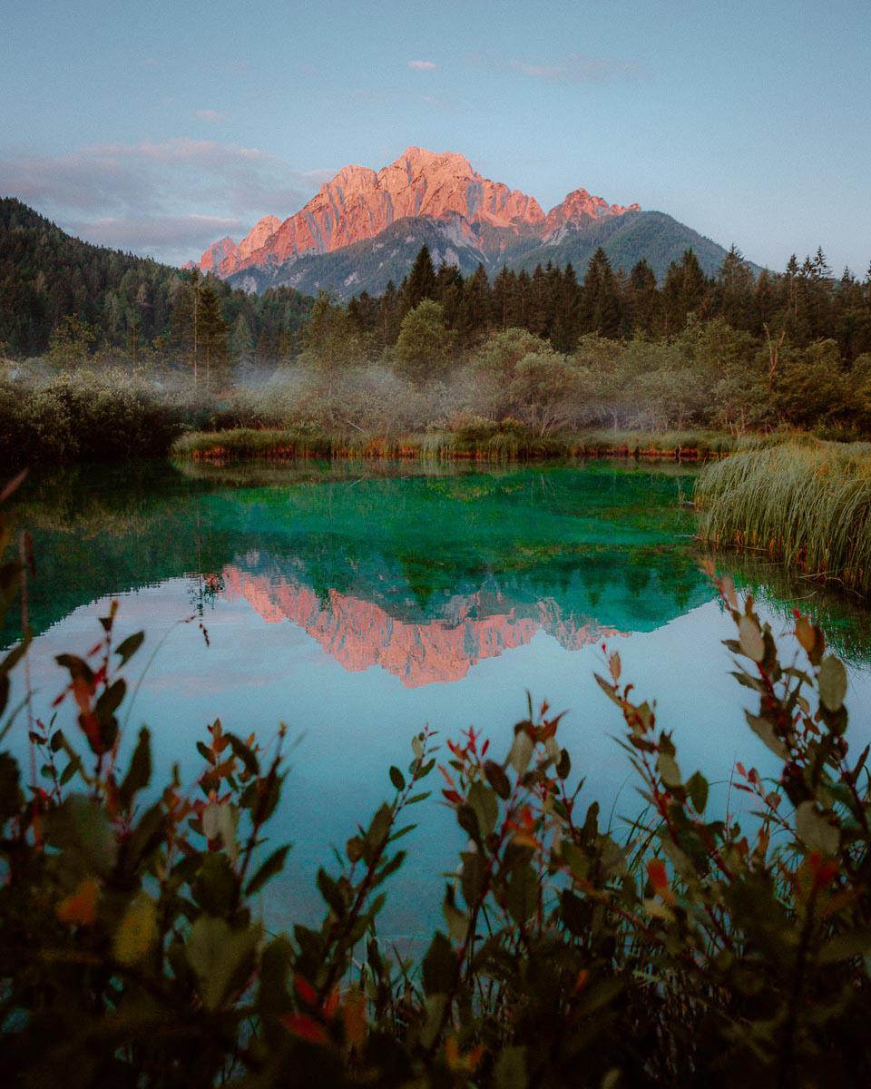 Image may contain: tree, lake and sky