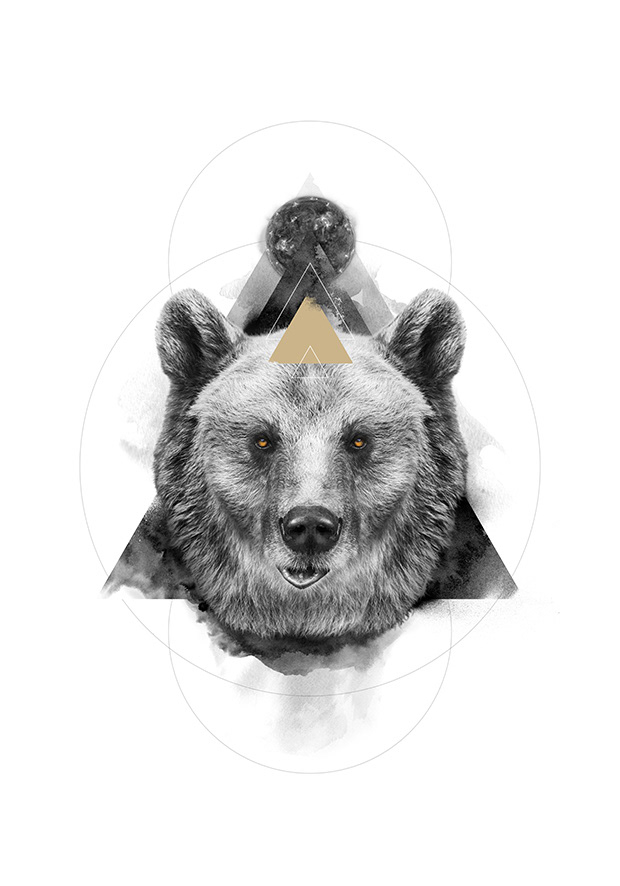 poster Spirit Animal raven bear deer wolf dream symbolism Jung occult