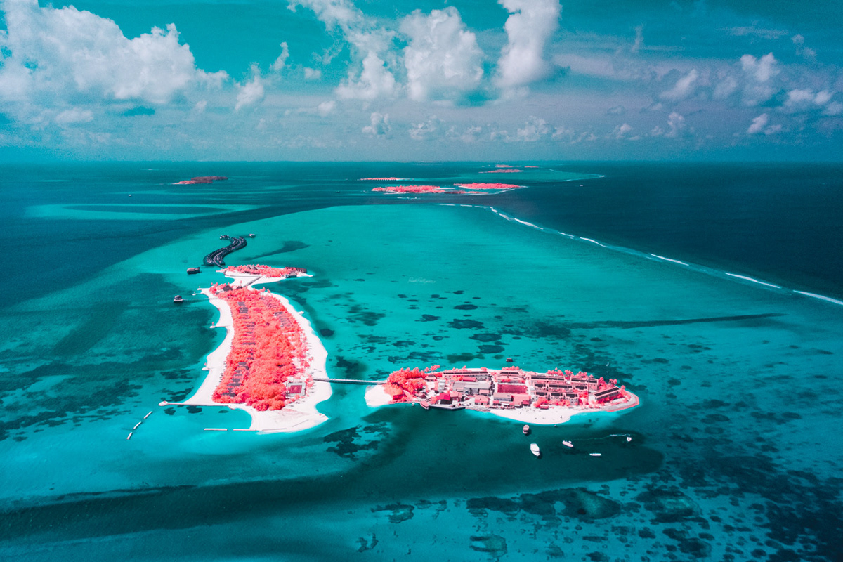 infrared surreal drone Aerial fine art beach palms abstract Island colors