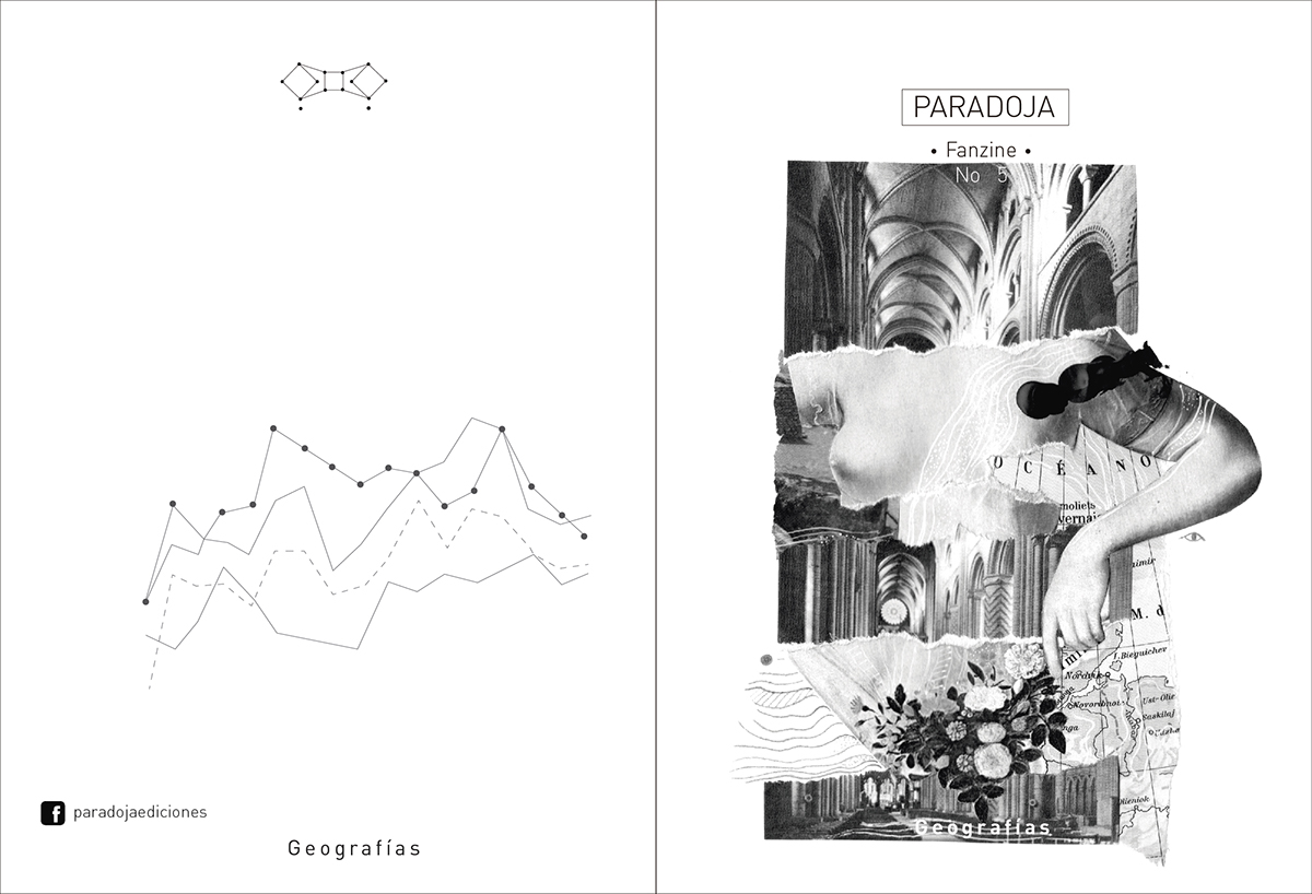 Collage Análogo  fanzine editorial