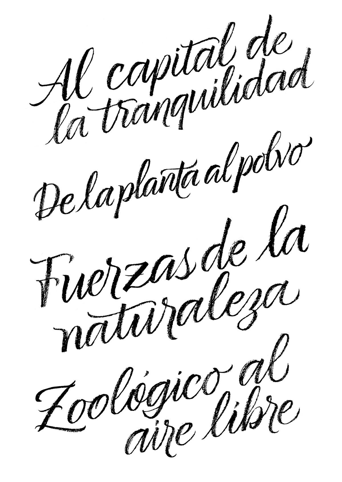 caligrafia revista magazine article titles Handlettering lettering brushpen brush writing