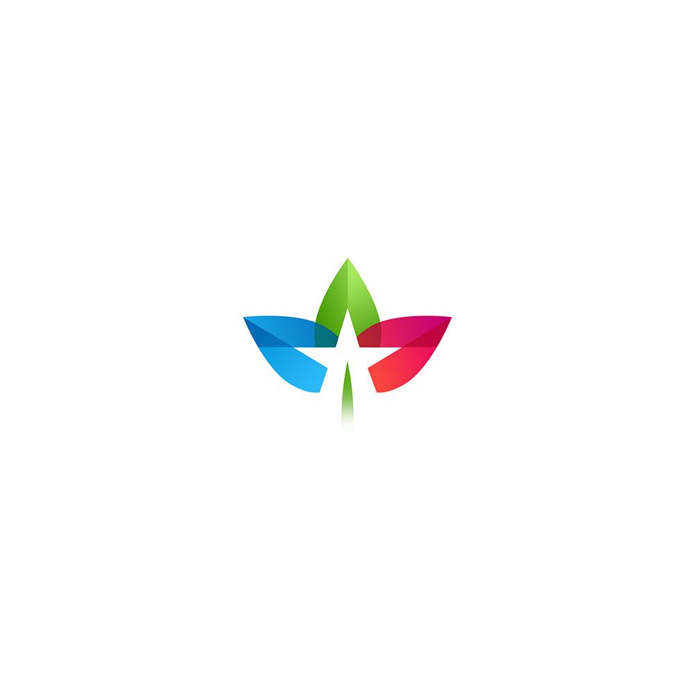 logo,brand,Icon,logodesign,logomark,type,image