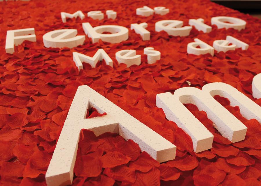 hotel Love February Valentine's Day petals
