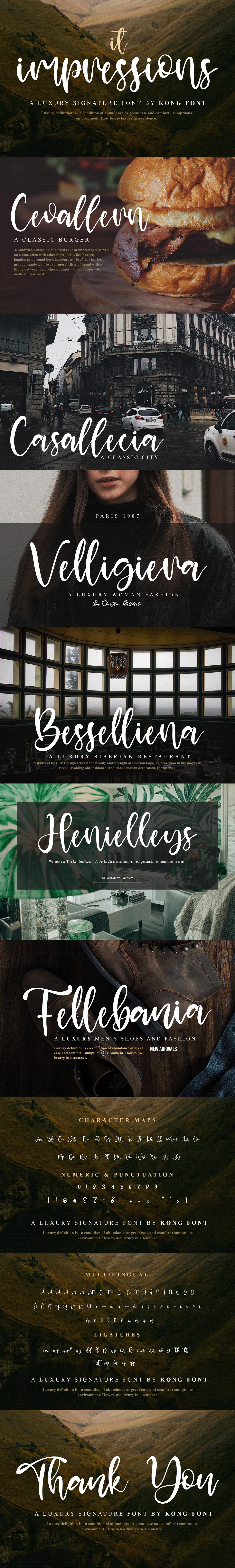 branding  decorative designfont font Logotype luxury Script signature TSHIRTFONT youtubefont