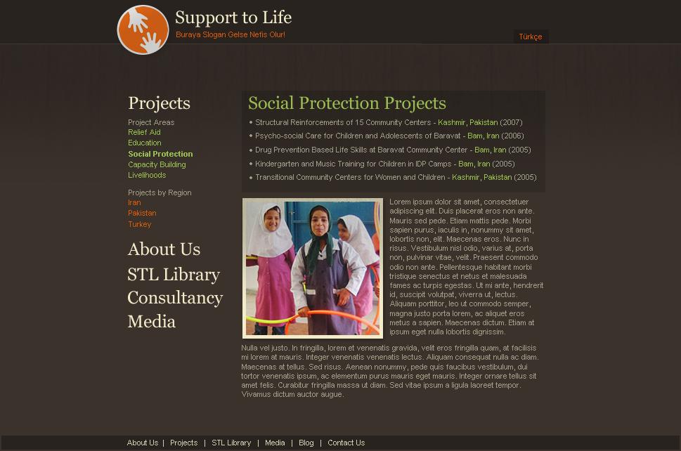 joomla NGO charity art direction  frontend development Freelance