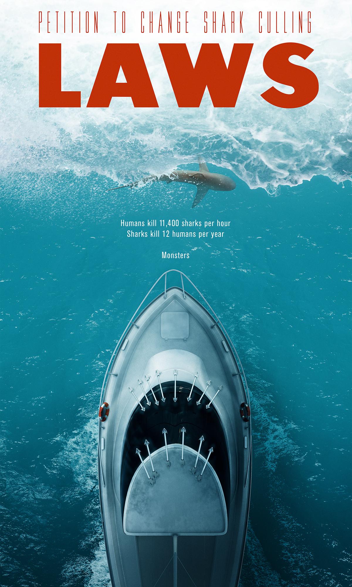 jaws,shark,Culling,cull,Hunting,animal