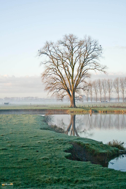 Adobe Portfolio leie deinze Drongen landschap