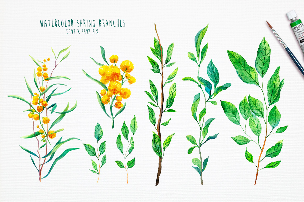 Watercolor Spring Flowers On Behance