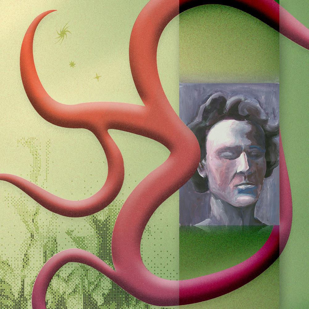 Cover Art graphic design  jungle