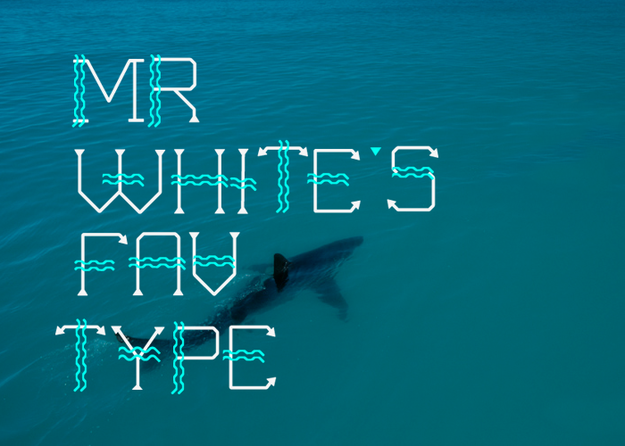 free type type fonts wave wave me in filiz filizsahin new trends Free font font sea undersea Big White shark