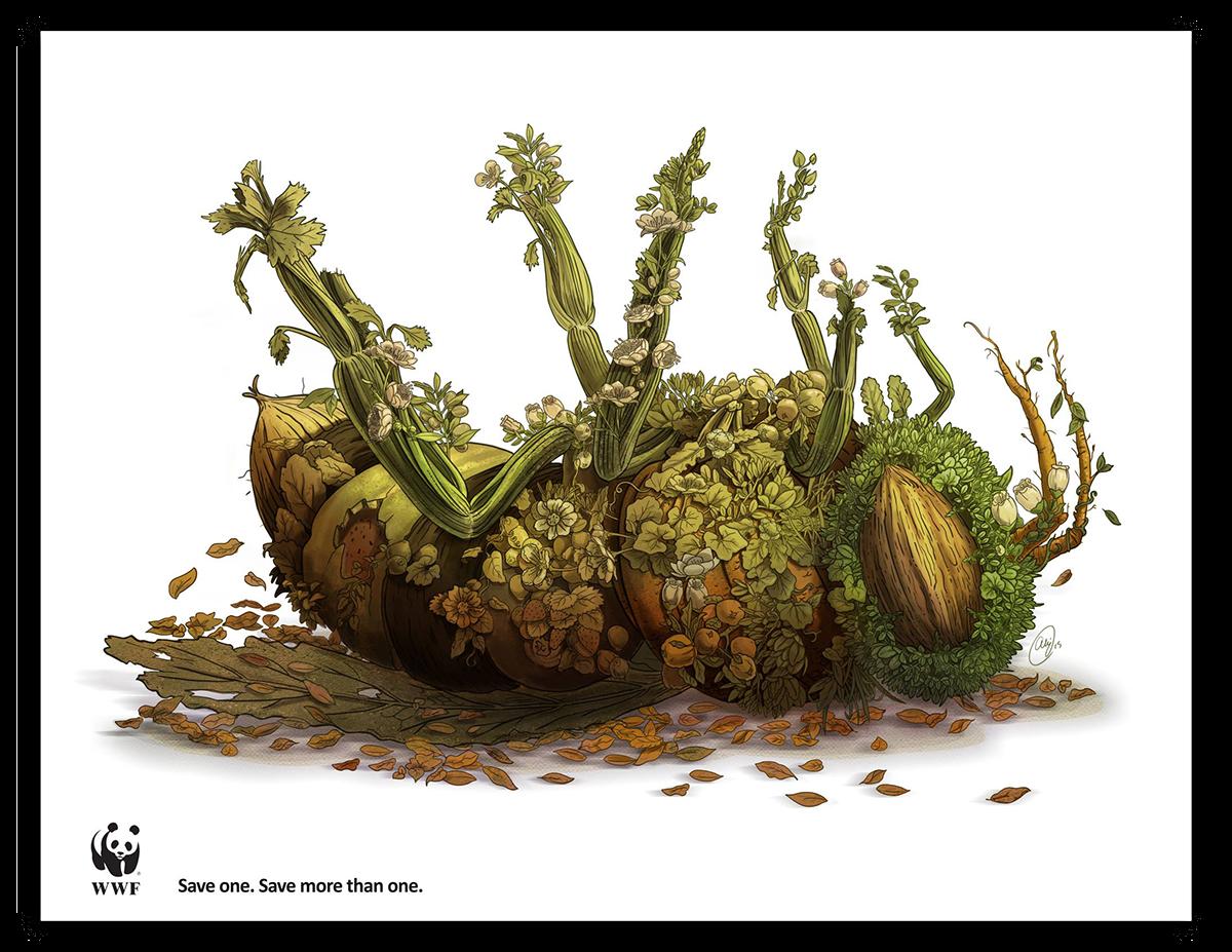 bees alejoporrasart WWF environment causes animals crops fruits vegetables alejo porras