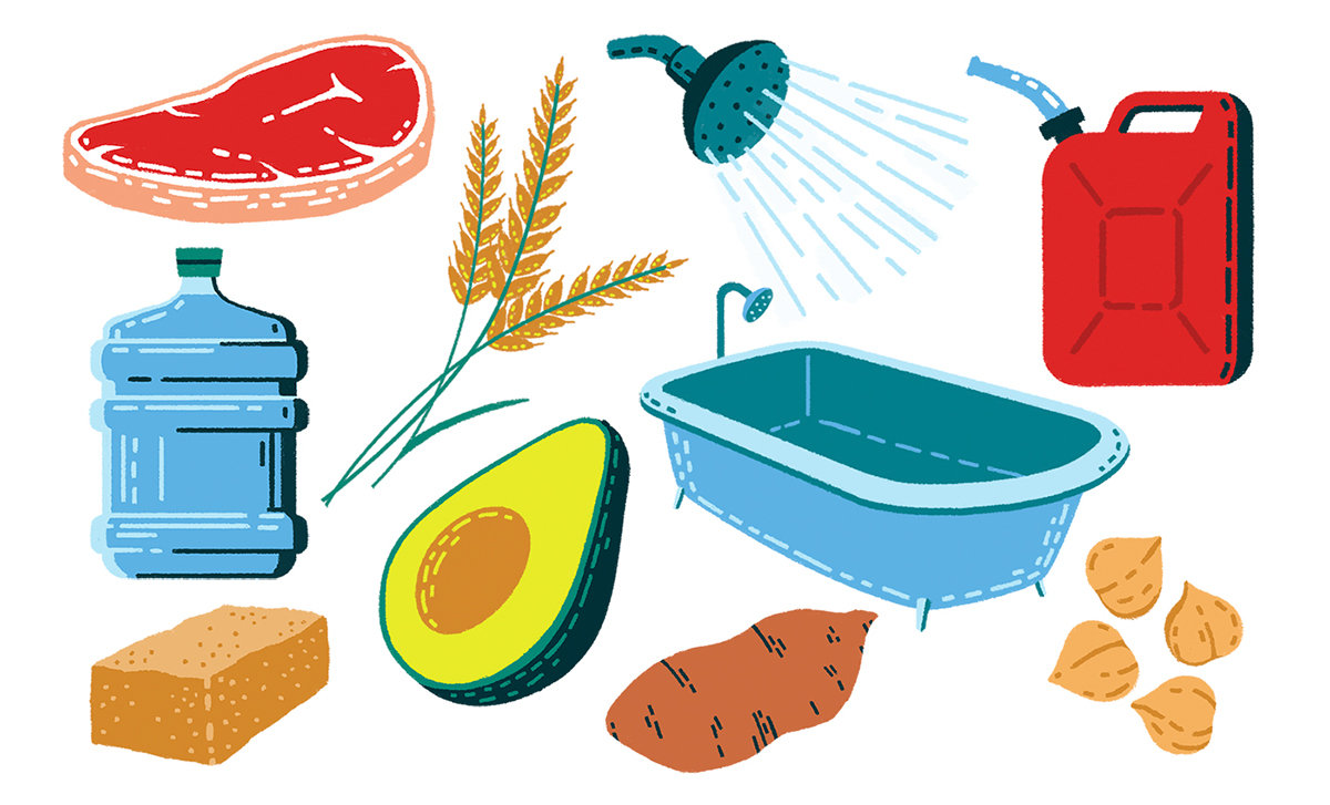 farming Food  Technology editorial home modern Nature pattern