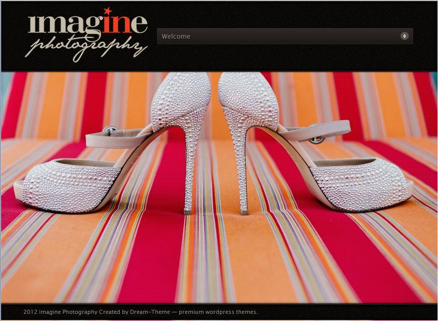 Logo Design Wedding Photography