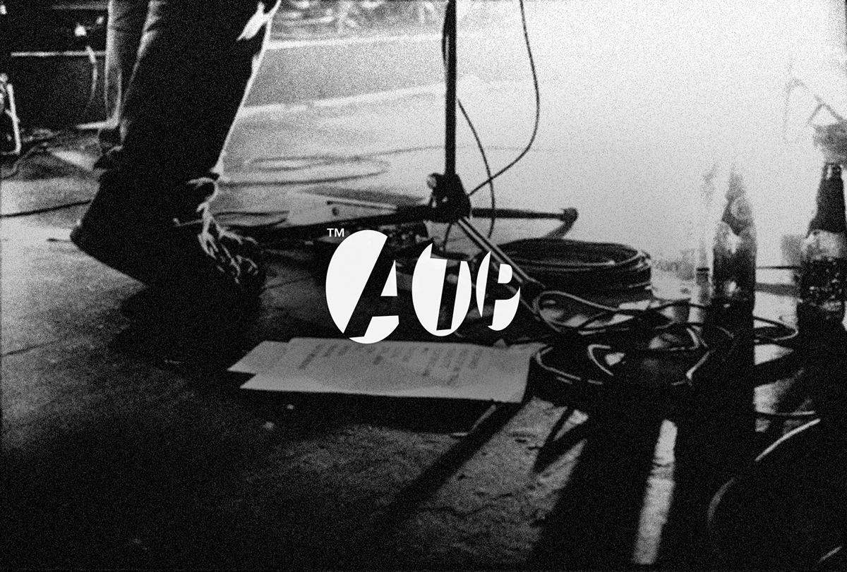 Adobe Portfolio music graphic design  posters branding  shephard fairey matt groening Jim Jarmusch