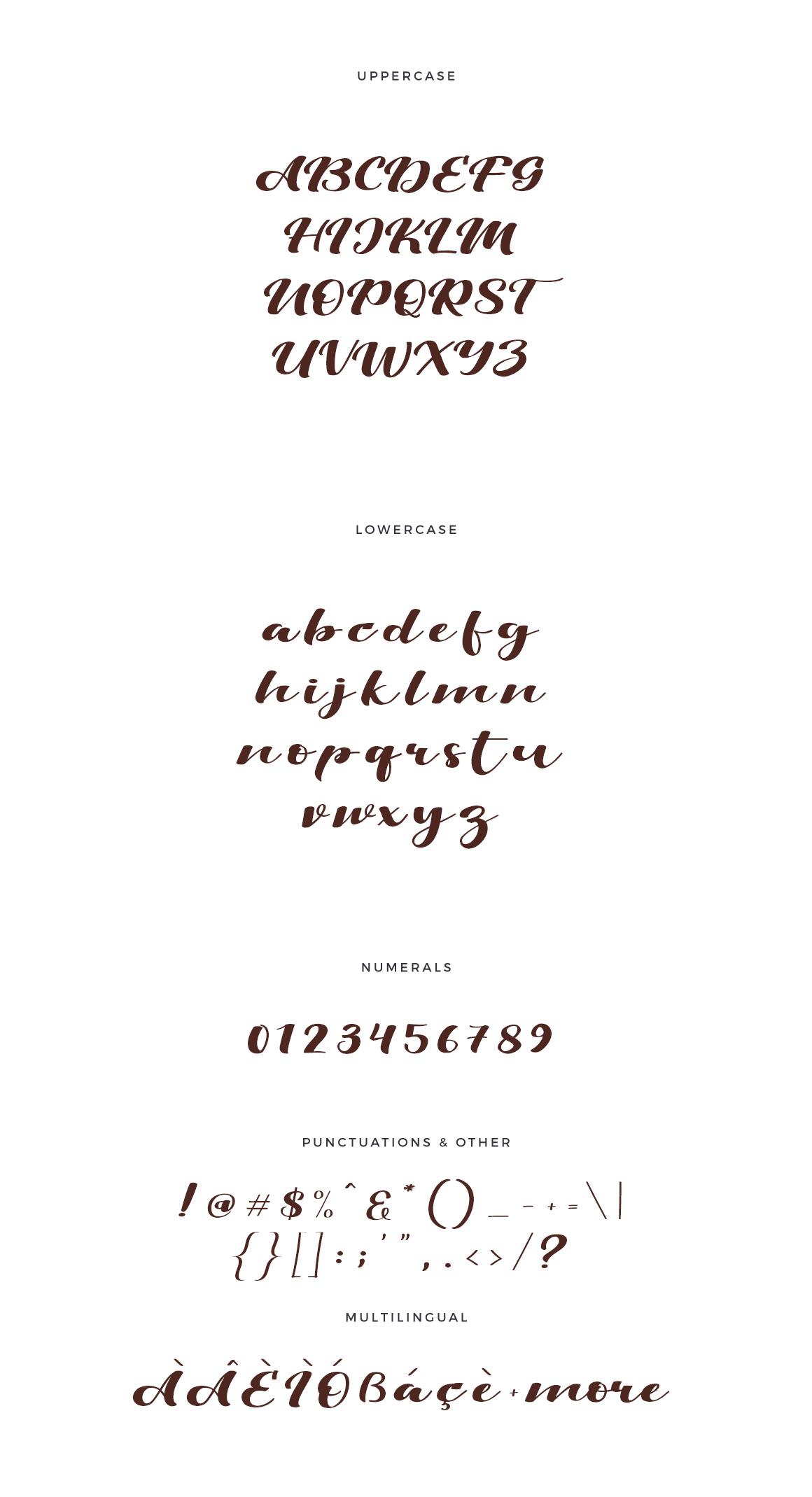 viksi,Script,free,100%,commecial,font,Typeface