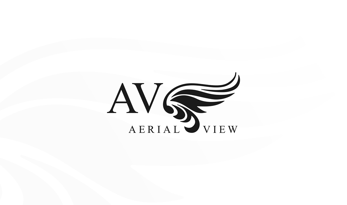 drone logo Logo Design