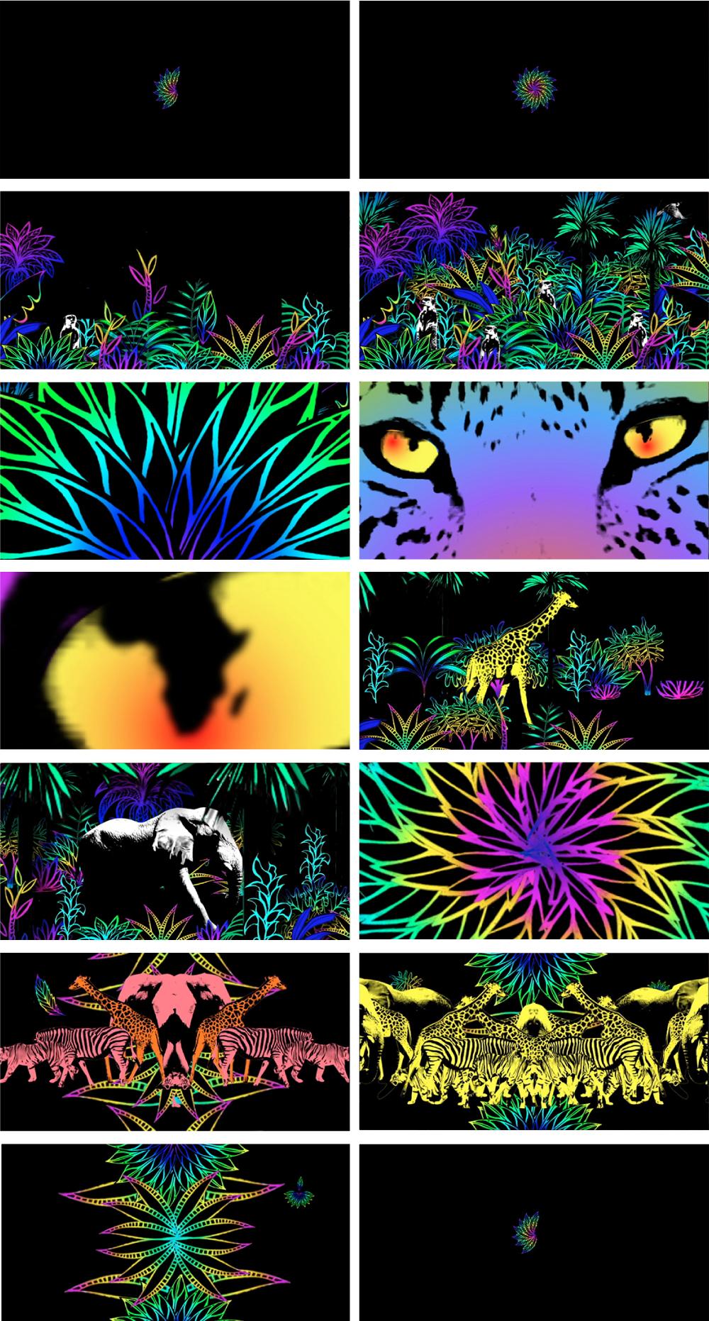 diseño 3 rico musica ska cubano tabu arte de disco ilustracion animacion ajiaco REMIX