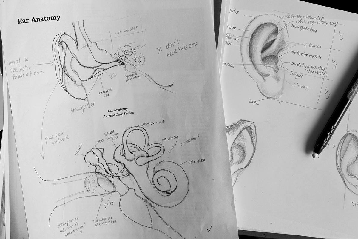 Human Ear Anatomy Manual Guide