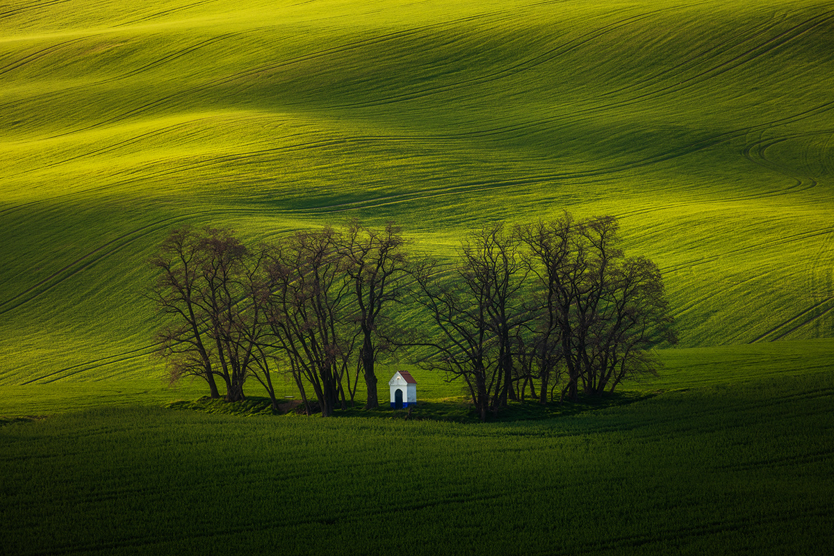 Czech Republic Landscape Nature Photography  Rolling Hills rural South Moravia spring Travel trees