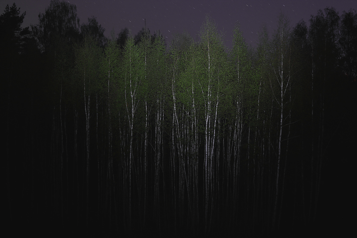 dark landscape lietuva lithuania Mindaugas Buivydas