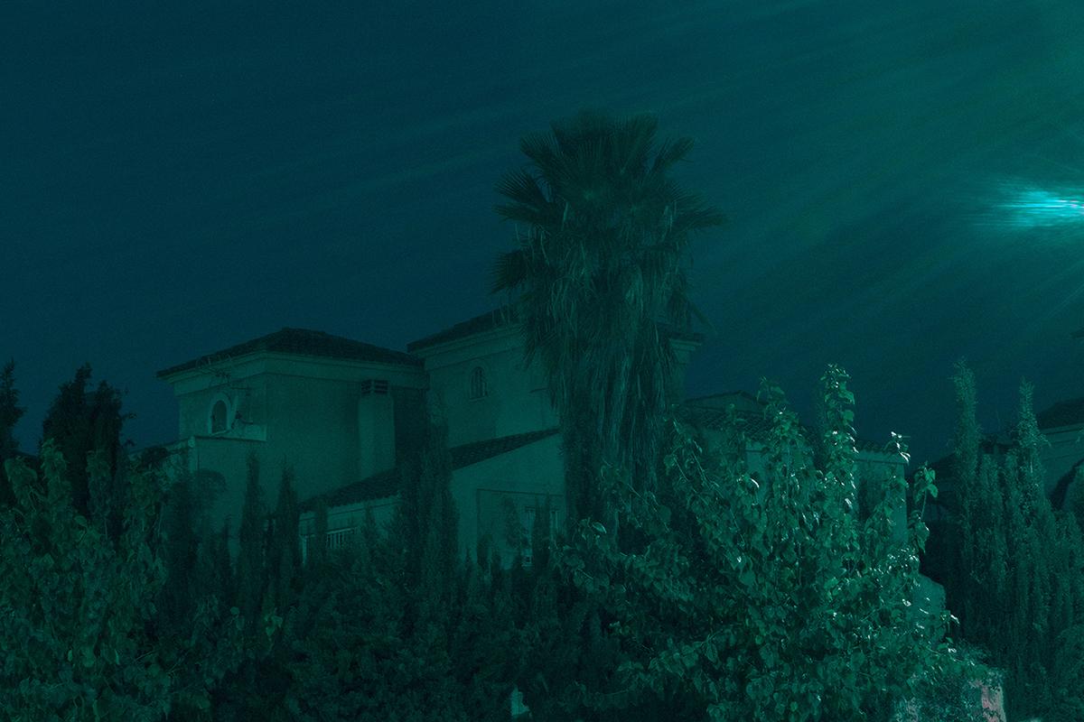 blue dark botanical long exposure night Fine Arts  neon Landscape lights Urban