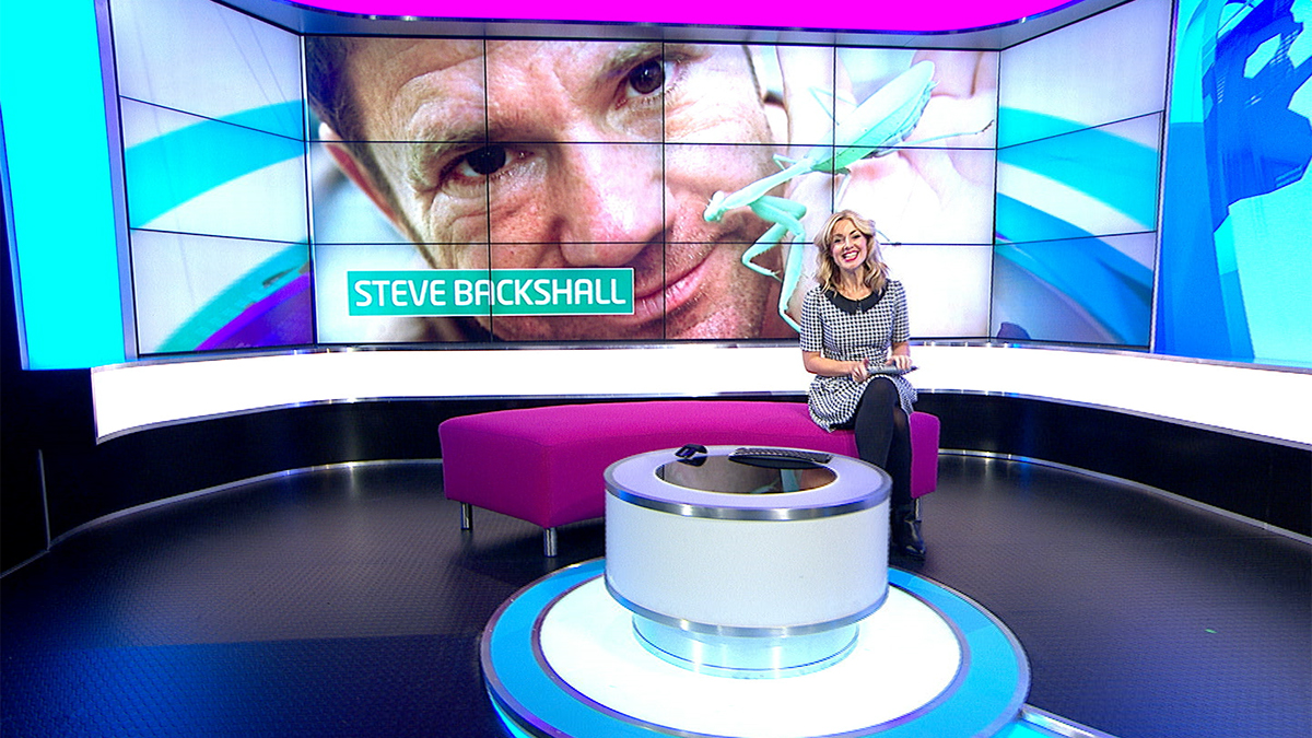 newsround - photo #16