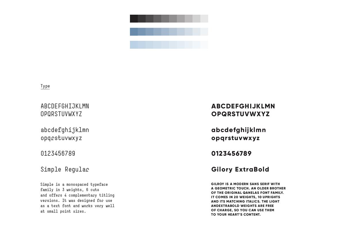 Adobe Portfolio brand identity logo typography   Health branding  river pattern water hospital