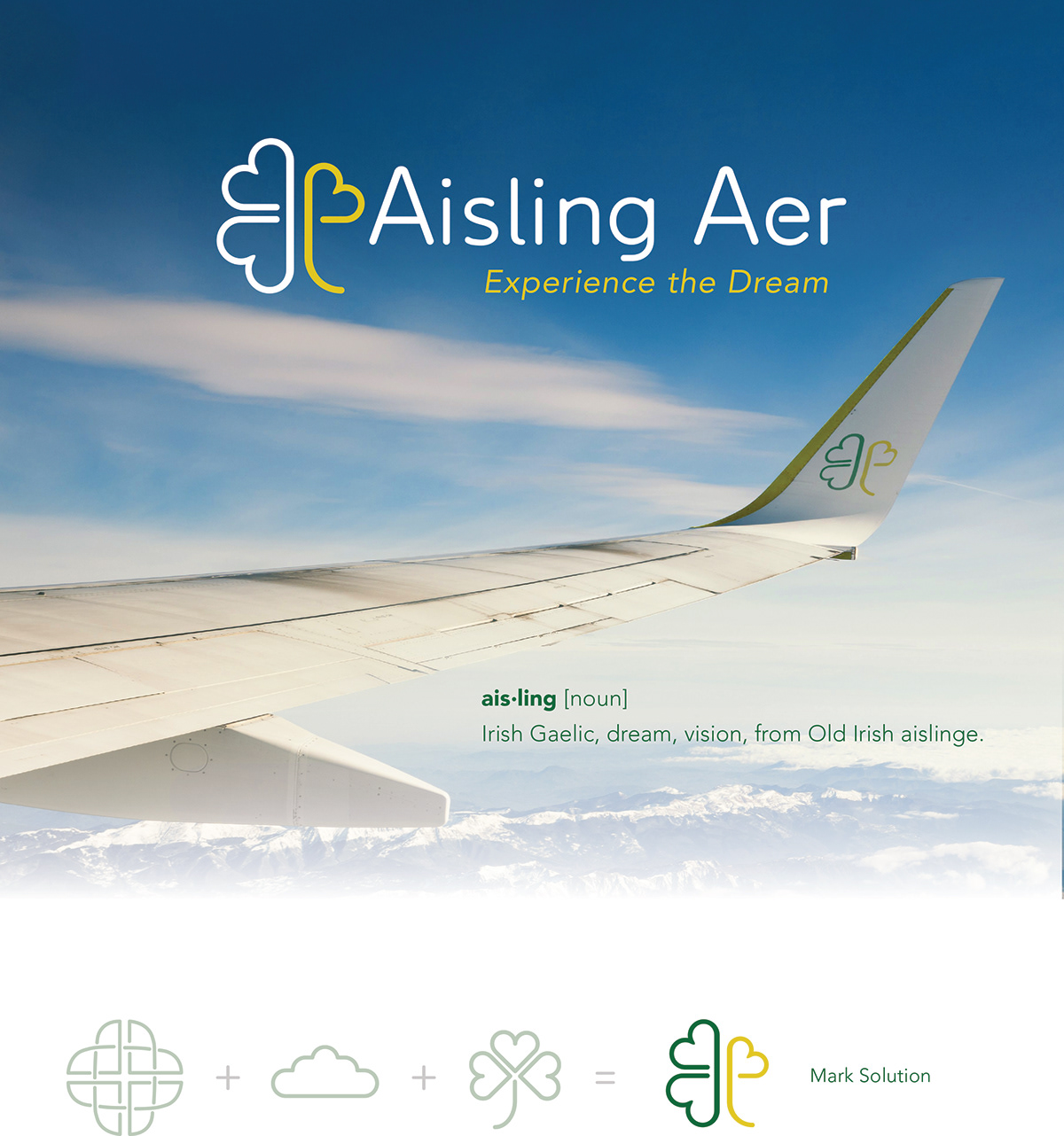 airline branding  graphic design