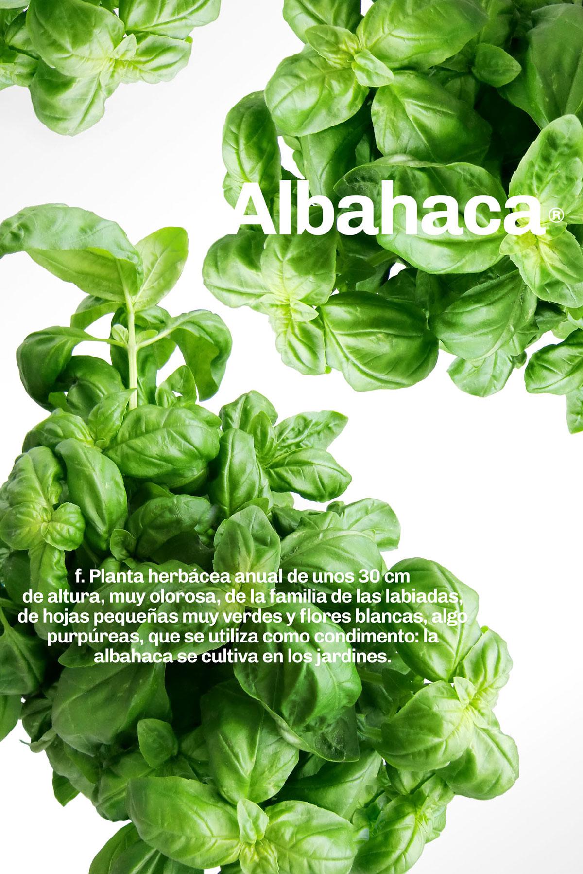 restaurant menu logo logos poster saludable green comida