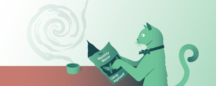 Cat catnip bowtie presentation design slides vector gradients