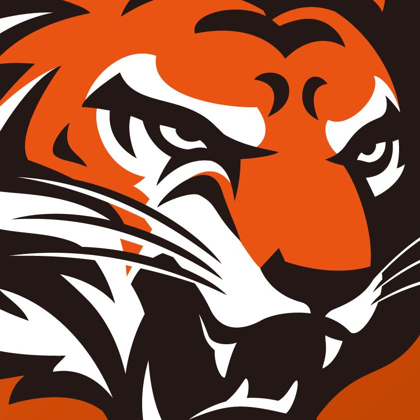 Cincinnati Bengals Logo Concept On Behance