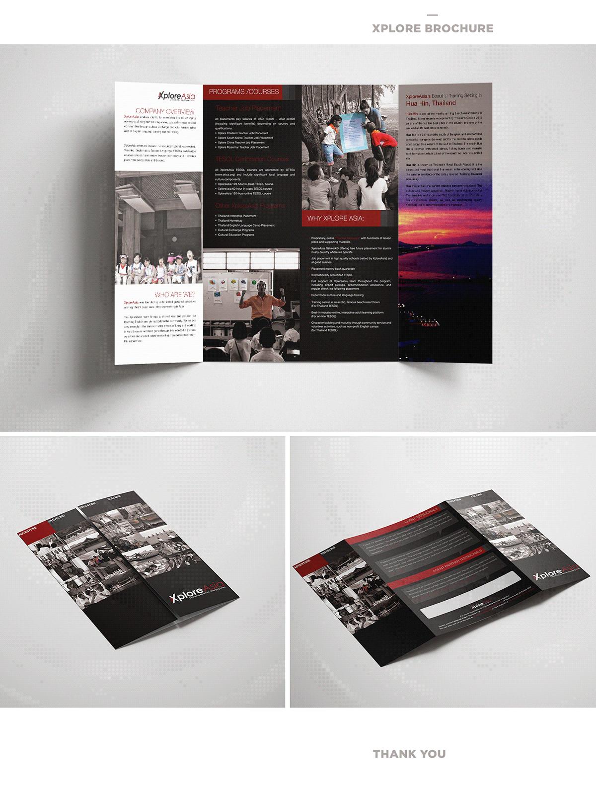 brochure brochure design design graphic design  print design