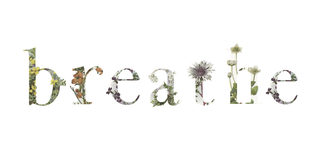 flower floral typeography alphabet photoshop bloom be brave growth happiness