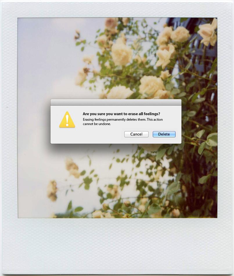 design digital manipulation Photo Manipulation  POLAROID error error messages human heartache delete edit Cancel save