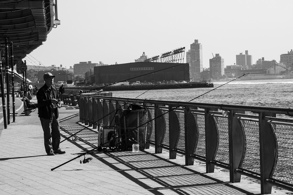 nyc bcn New York barcelona spain black and white Photographie fishing pigeons human