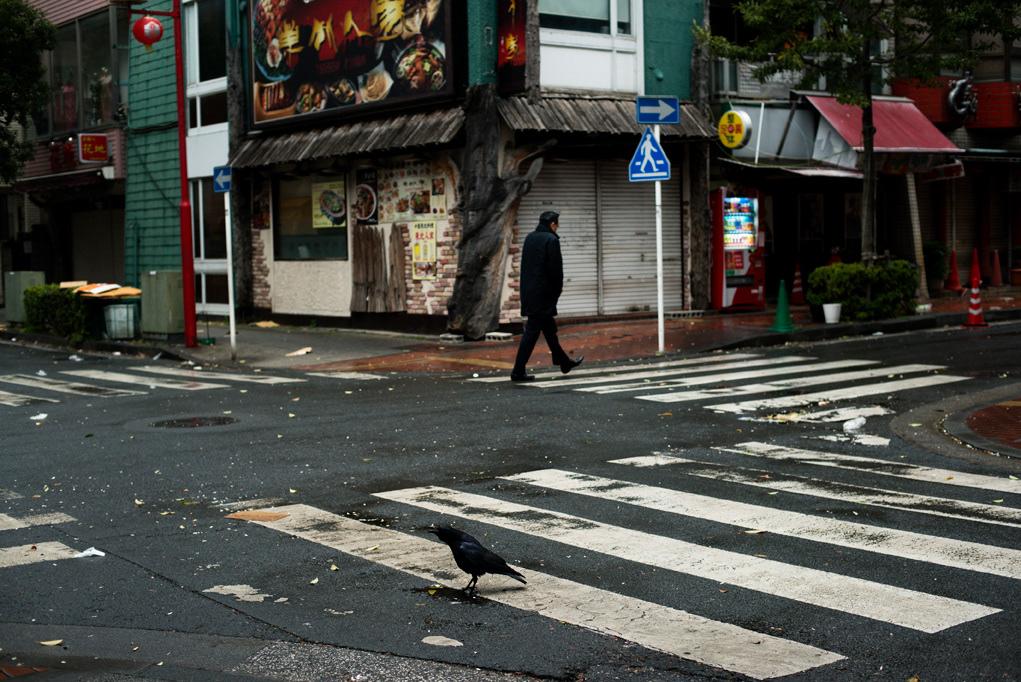 japan julien coquentin tokyo JAPON