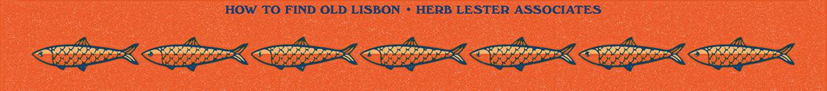 Image may contain: orange and fish