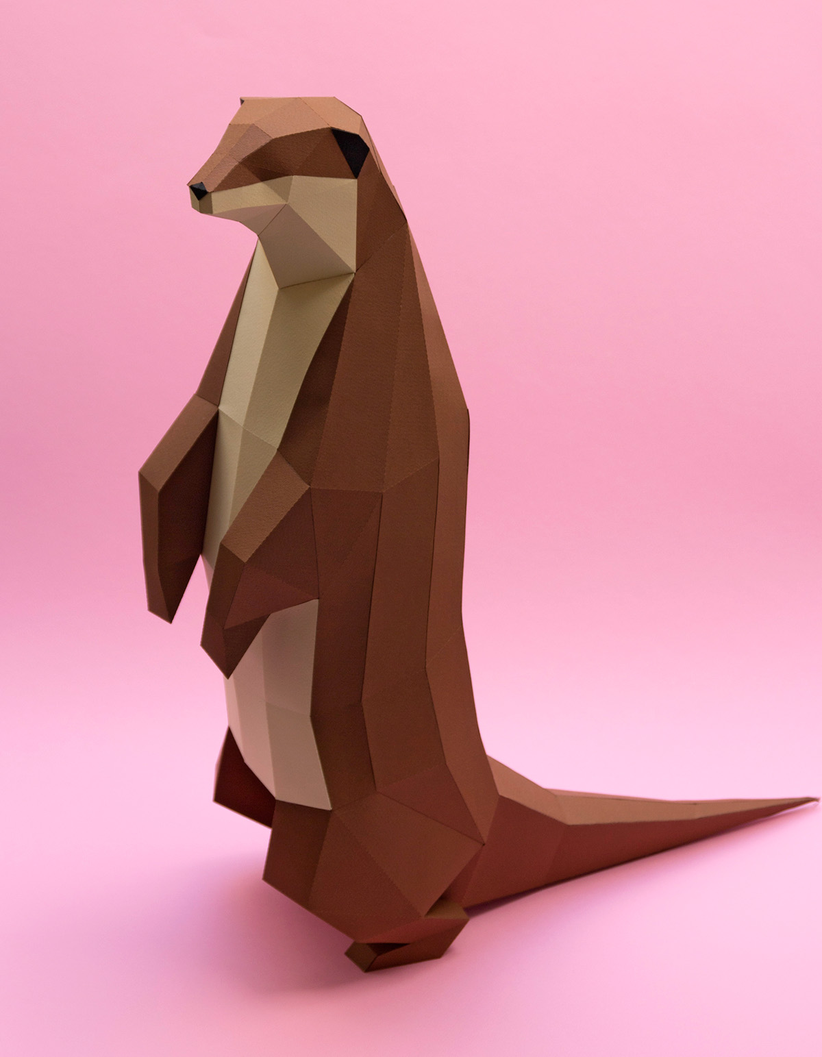 nutria gaviota papercraft gull otter cíes