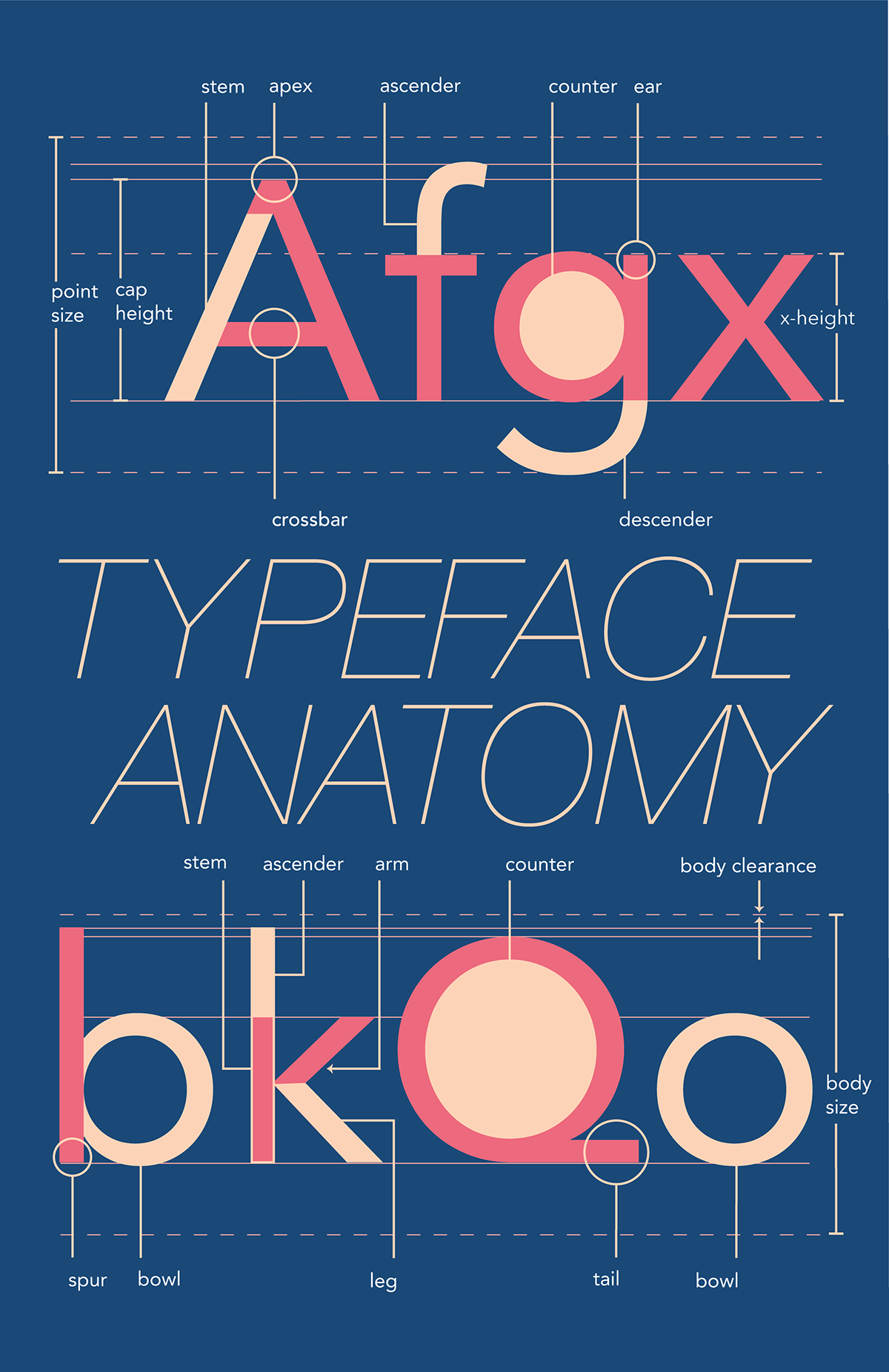 Typeface Anatomy Of Avenir On Behance