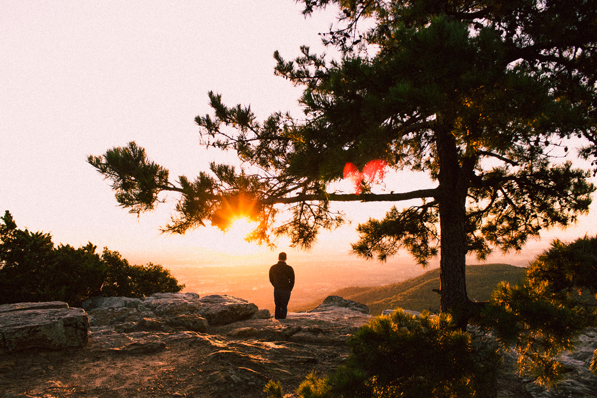 19 Lifestyle Film Lightroom Presets & Camera Raw on Behance